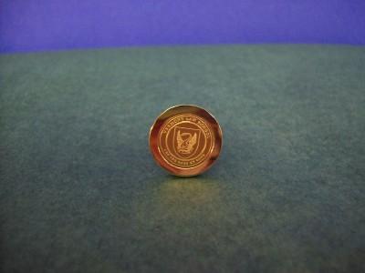 VLS Lapel Pin
